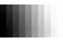 Màu xám -  công cụ thiết kế mạnh mẽ